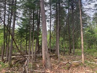 Terrain à vendre à Val-Racine, Estrie, Chemin de Piopolis, 28125466 - Centris.ca