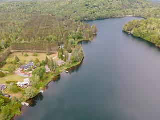 Chalet à vendre à Lac-Supérieur, Laurentides, 40 - 44, Chemin  Lanthier, 11170330 - Centris.ca