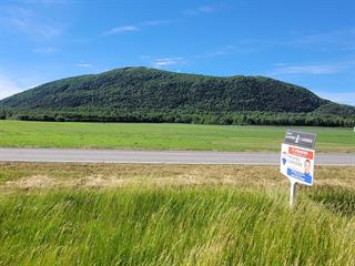 Lot for sale in Saint-Pie, Montérégie, Rang de la Rivière Sud, 27998855 - Centris.ca