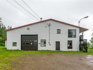House for sale in Saint-Ubalde, Capitale-Nationale, 356 - 356A, Rue  Saint-Paul, 24026082 - Centris.ca