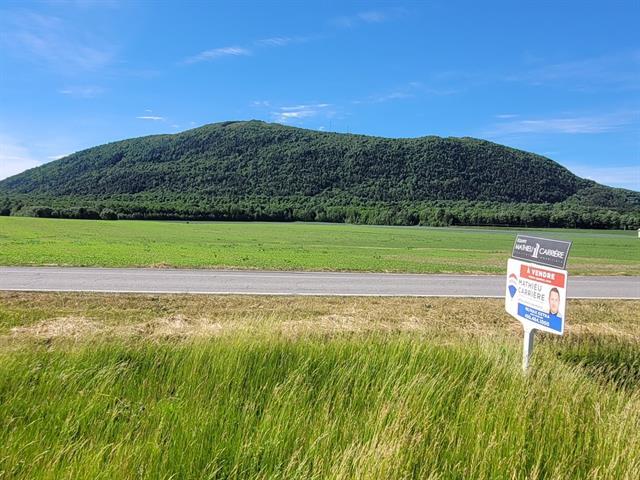 Terrain à vendre à Saint-Pie, Montérégie, Rang de la Rivière Sud, 12291763 - Centris.ca
