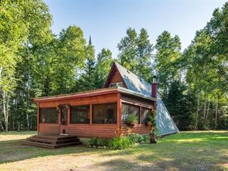 Maison à vendre à Aumond, Outaouais, 124, Chemin  Daoust, 23857807 - Centris.ca