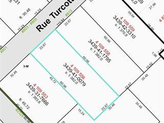 Terrain à vendre à Sainte-Agathe-de-Lotbinière, Chaudière-Appalaches, Rue  Turcotte, 14836936 - Centris.ca
