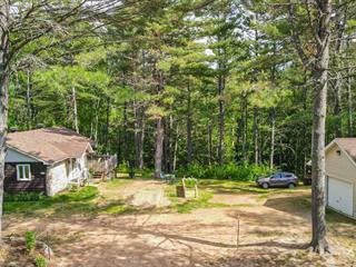 Maison à vendre à Amherst, Laurentides, 197, Chemin  Jean-Jeunes, 13542504 - Centris.ca