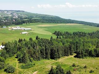 Terrain à vendre à Les Éboulements, Capitale-Nationale, Chemin  Gemma-Tremblay, 25956918 - Centris.ca