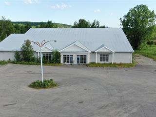 Bâtisse commerciale à vendre à Lac-Brome, Montérégie, 472, Chemin de Knowlton, 20696150 - Centris.ca