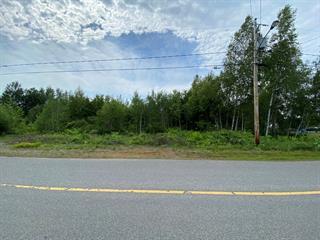 Terre à vendre à Hérouxville, Mauricie, Rue  Gagnon, 25411882 - Centris.ca