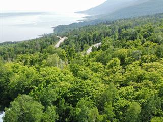 Terrain à vendre à Petite-Rivière-Saint-François, Capitale-Nationale, Promenade du Saint-Laurent, 9456479 - Centris.ca
