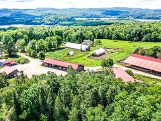House for sale in Montcalm, Laurentides, 90Z - 94Z, Chemin  Morgan, 20395770 - Centris.ca