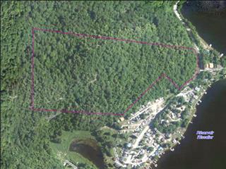 Lot for sale in Bowman, Outaouais, Route  307, 16382228 - Centris.ca