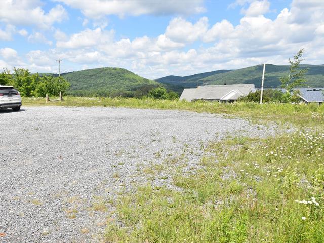 Terrain à vendre à Pohénégamook, Bas-Saint-Laurent, Rue des Pignons, 26291085 - Centris.ca
