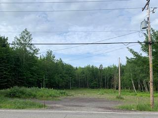 Terrain à vendre à Montmagny, Chaudière-Appalaches, 460, Route  Trans-Comté, 23744190 - Centris.ca