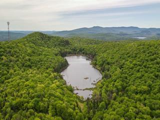 Terrain à vendre à Lac-Supérieur, Laurentides, Montée  Brien, 22265176 - Centris.ca