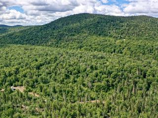 Land for sale in Saint-Zénon, Lanaudière, 30Z, Chemin du Lac-de-la-Cabane, 11163484 - Centris.ca