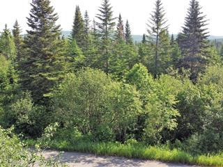 Land for sale in La Malbaie, Capitale-Nationale, Rang  Saint-Louis, 19436745 - Centris.ca