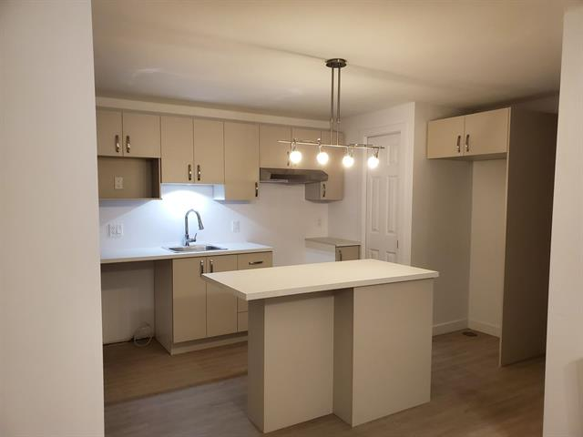 Duplex à vendre à Lévis (Les Chutes-de-la-Chaudière-Est), Chaudière-Appalaches, 247, Rue de la Grande-Hermine, 22673762 - Centris.ca