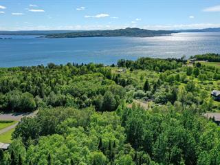 Lot for sale in Nouvelle, Gaspésie/Îles-de-la-Madeleine, Route de Miguasha Ouest, 16289773 - Centris.ca