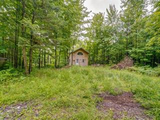 Cottage for sale in Namur, Outaouais, 401, Chemin des Vergers, 24446867 - Centris.ca