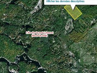 Terrain à vendre à L'Île-du-Grand-Calumet, Outaouais, Chemin du Rocher-Fendu, 24494940 - Centris.ca