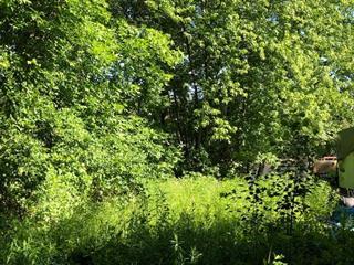 Terrain à vendre à Maniwaki, Outaouais, 01, Rue  Hubert, 11665769 - Centris.ca