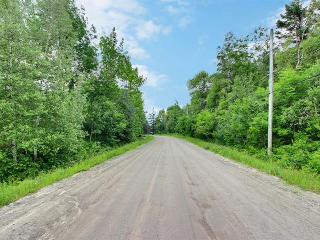 Terrain à vendre à Stukely-Sud, Estrie, Chemin  Gérard-Dame, 26439211 - Centris.ca