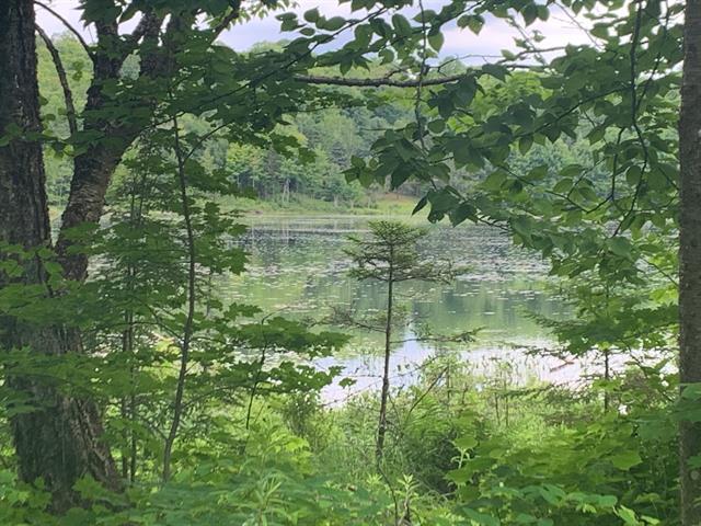 Lot for sale in Boileau, Outaouais, Chemin du Lac-à-la-Croix, 9730590 - Centris.ca