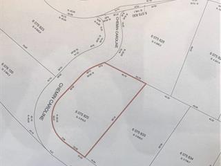 Terrain à vendre à Saint-Michel-des-Saints, Lanaudière, Chemin  Caroline, 18304787 - Centris.ca