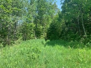 Terre à vendre à Sainte-Agathe-des-Monts, Laurentides, Rue des Merles, 28864841 - Centris.ca