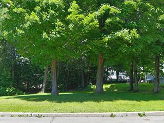 Lot for sale in Brownsburg-Chatham, Laurentides, Rue  Woodbine, 22384488 - Centris.ca