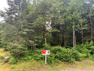 Lot for sale in Chertsey, Lanaudière, Rue  Martin, 18432922 - Centris.ca