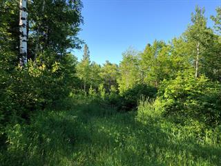 Terrain à vendre à Saguenay (Lac-Kénogami), Saguenay/Lac-Saint-Jean, Chemin du Parc, 10124983 - Centris.ca