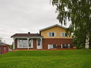 House for sale in Port-Cartier, Côte-Nord, 30, Rue de la Rivière, 26023510 - Centris.ca