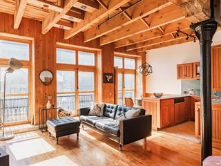 Loft / Studio for rent in Montréal (Ville-Marie), Montréal (Island), 60, Rue  De Brésoles, apt. 222, 11158576 - Centris.ca