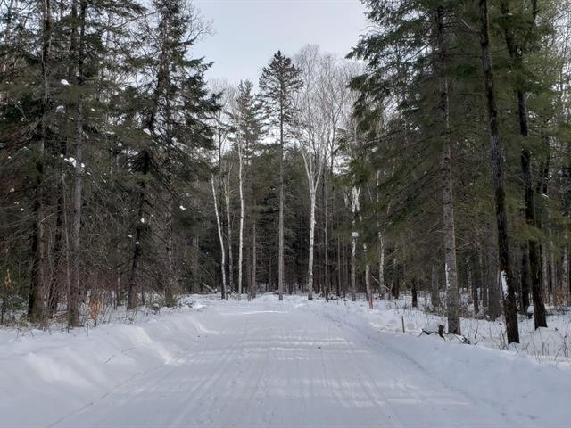 Terrain à vendre à Val-des-Bois, Outaouais, 16, Impasse des Conifères, 22089878 - Centris.ca