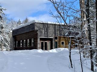 Maison à vendre à Chelsea, Outaouais, 41, Chemin  Mountainview, 17785275 - Centris.ca