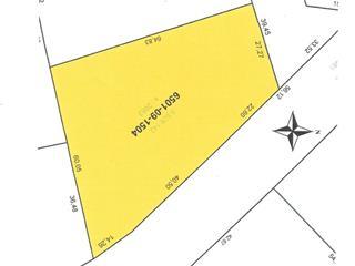 Terrain à vendre à Estérel, Laurentides, Chemin d'Estérel, 14739157 - Centris.ca