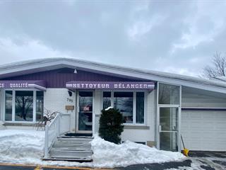 House for sale in Victoriaville, Centre-du-Québec, 795, Rue  Notre-Dame Ouest, 20020838 - Centris.ca