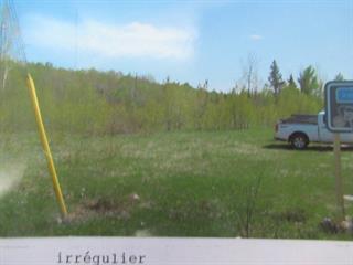 Terrain à vendre à Mont-Laurier, Laurentides, 80, Route  Pierre-Neveu, 23532418 - Centris.ca