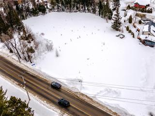 Lot for sale in Val-David, Laurentides, Route  117, 10187719 - Centris.ca