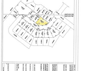 Terrain à vendre à Saguenay (La Baie), Saguenay/Lac-Saint-Jean, 6430331, Rue des Parulines, 15645480 - Centris.ca