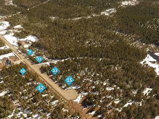 Terrain à vendre à Sainte-Lucie-des-Laurentides, Laurentides, Chemin  Adrien, 27538218 - Centris.ca