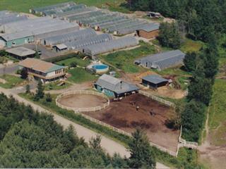 Bâtisse commerciale à vendre à Saint-Ambroise, Saguenay/Lac-Saint-Jean, 645, Rang  Double, 26306873 - Centris.ca