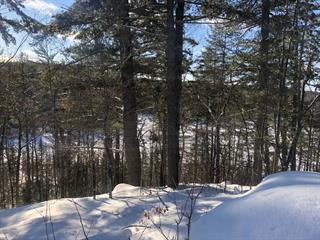Terrain à vendre à Gracefield, Outaouais, 61, Chemin du Tonnerre, 17743688 - Centris.ca