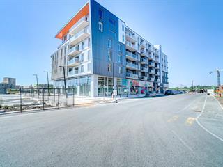 Condo à vendre à Gatineau (Hull), Outaouais, 40, Rue  Jos-Montferrand, app. 212, 24594482 - Centris.ca