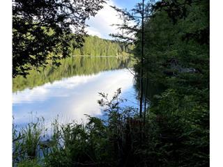 Terre à vendre à Labelle, Laurentides, Chemin du Lac-Bethlen, 22904900 - Centris.ca
