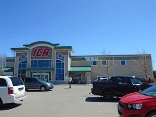 Bâtisse commerciale à louer à Saint-Pascal, Bas-Saint-Laurent, 400, Avenue  Chapleau, 26382443 - Centris.ca