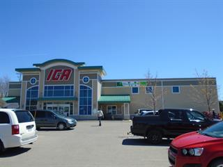 Bâtisse commerciale à vendre à Saint-Pascal, Bas-Saint-Laurent, 400, Avenue  Chapleau, 26609820 - Centris.ca