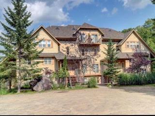 Condo à vendre à Mont-Tremblant, Laurentides, 216, Rue du Mont-Plaisant, app. 6, 17272247 - Centris.ca
