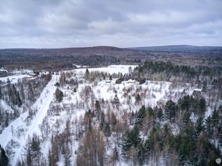 Lot for sale in Beaulac-Garthby, Chaudière-Appalaches, Chemin  Aylmer, 19888898 - Centris.ca