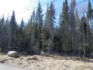 Terrain à vendre à Lac-Supérieur, Laurentides, Impasse du Cerf, 25457956 - Centris.ca